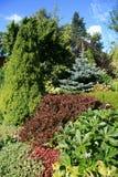 Passage couvert en jardin d'été Images stock