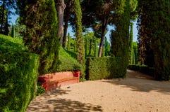 Passage couvert et un banc en parc avec la verdure lumineuse Photos stock