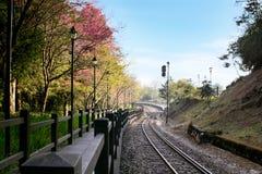 Passage couvert le long de chemin de fer avec le feu et la montagne de signalisation Images stock