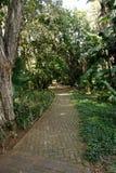 Passage couvert par un jardin tropical pour la paix et tranquille images libres de droits