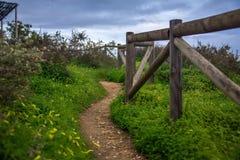 Passage couvert parmi l'herbe sur une falaise, le long d'une barrière en bois Image stock