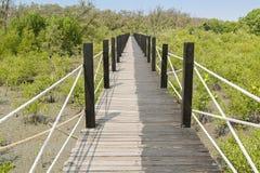 Passage couvert simple fait en chemin en bois et corde entourés par tropique photos stock