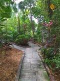Passage couvert tropical Images libres de droits