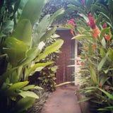 Passage couvert tropical de jardin et entrée perlée de rideau Photographie stock libre de droits