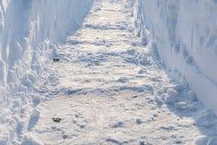 Passage dégagé dans la neige profonde Images libres de droits