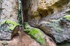 Passage de gorge de grès, paradis de Bohème, République Tchèque Photographie stock libre de droits