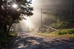 Passage de lumière du soleil par des arbres dans route la vieille et de ruine dans la campagne Photographie stock libre de droits