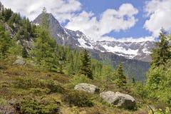 Passage de montagne de Montets images stock