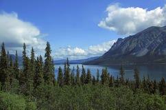 Passage et artère blancs de Yukon photos libres de droits