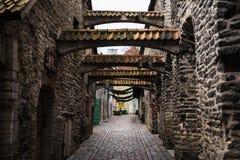 Passage för ` s för St Catherine i vinter i Tallinn royaltyfri fotografi