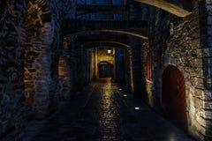 Passage för ` s för St Catherine på natten i Tallinn royaltyfria foton