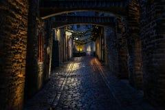 Passage för ` s för St Catherine på natten i Tallinn arkivfoto