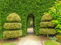Passage. Through the hedge in Cloudehill gardens in Olinda, Victoria, Australia Stock Images