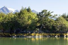 Passage intérieur des fjords chiliens Photos libres de droits