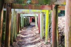 Passage of Japanese Torii gates Royalty Free Stock Photos