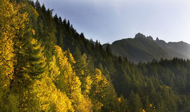Passage Leavenworth Washington de Stevens de couleurs d'automne Images libres de droits