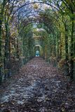 Passage with Plants in Autumn and two people at the End of the T. Unnel Royalty Free Stock Image
