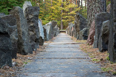 Passage between rocks in the forest Royalty Free Stock Images