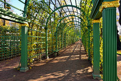 Passage in Summer garden, Stock Photography