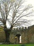 Passage sur le mur en pierre sur le passiflore, Espagne images stock