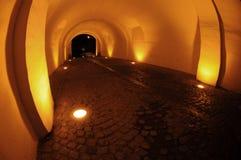 passage vaulted Στοκ φωτογραφία με δικαίωμα ελεύθερης χρήσης