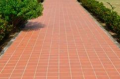 Passage way with orange trellis Stock Image