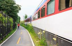 Passagem ao longo do trem no rairoad interrompido imagem de stock