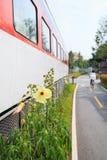 Passagem ao longo do trem no rairoad interrompido foto de stock