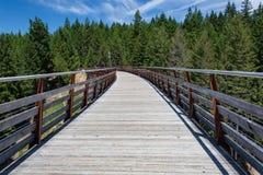 Passagem através da ponte Railway anterior Fotos de Stock Royalty Free
