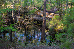 Passagem da fuga perto de uma mola de Florida Fotos de Stock Royalty Free