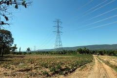 A passagem da linha elétrica a maneira na exploração agrícola em Tailândia Fotos de Stock Royalty Free