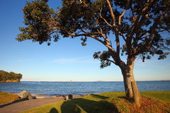 Passagem da praia de Matakatia foto de stock royalty free