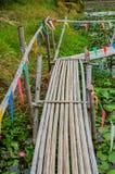 Passagem de bambu na lagoa Imagem de Stock