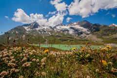 Passagem de Bernina Imagem de Stock Royalty Free