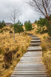 Passagem de madeira com etapas e o céu nebuloso Fotografia de Stock Royalty Free