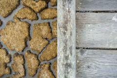 Passagem de madeira e lama secada no fundo, pântano de Alviso, sul San Francisco Bay, Califórnia imagem de stock royalty free