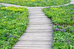 Passagem de madeira entre o gramado da flor Fotografia de Stock Royalty Free