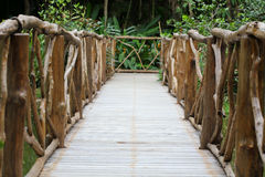 Passagem de madeira na natureza verde Fotografia de Stock Royalty Free