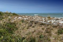 Passagem de madeira pela praia em Tauparikaka Marine Reserve, Nova Zelândia fotografia de stock