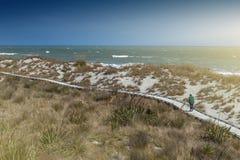 Passagem de madeira pela praia em Tauparikaka Marine Reserve, Nova Zelândia fotografia de stock royalty free