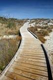 Passagem de madeira pela praia em Tauparikaka Marine Reserve, Nova Zelândia imagens de stock
