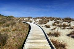 Passagem de madeira pela praia em Tauparikaka Marine Reserve, Nova Zelândia fotos de stock royalty free