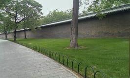 Passagem de pedra com a parede da árvore e de tijolo em Green Park imagem de stock