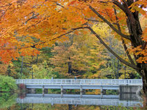 Passagem do outono Foto de Stock
