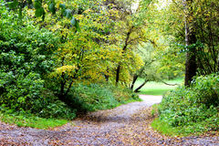Passagem do outono no parque Fotos de Stock Royalty Free