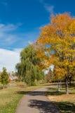 Passagem do parque do outono Fotos de Stock Royalty Free