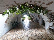 Passagem do pavimento do arco com as plantas verdes que crescem acima Imagem de Stock