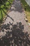 Passagem e folha de pedra das árvores no jardim Imagem de Stock Royalty Free