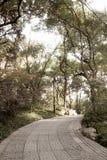 A passagem esmagou a rota de pedra para andar e caminhar e biking para ir ao fundo da natureza da floresta fotos de stock