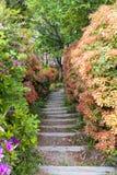 Passagem estreita no jardim colorido luxúria Imagens de Stock Royalty Free